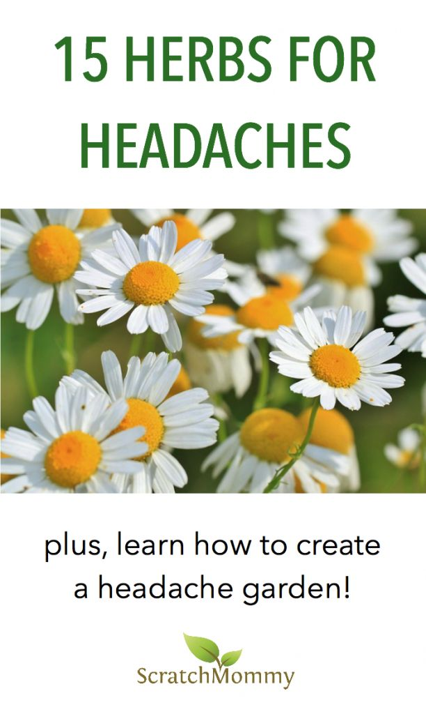 If you're suffering from bad headaches and are looking a natural solution, you'll want to check out this post on 15 herbs for headaches. You may even be inspired to grow your own headache garden!