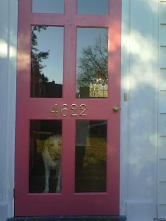 25+ best Wood storm doors ideas on Pinterest | Custom storm doors ...