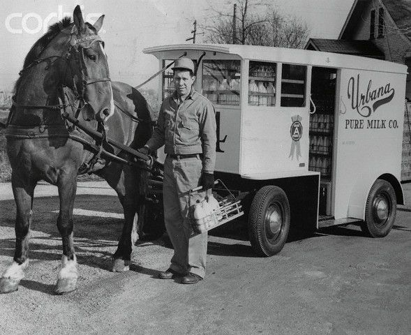 Milkman Standing Beside His Horse Drawn Milk Wagon