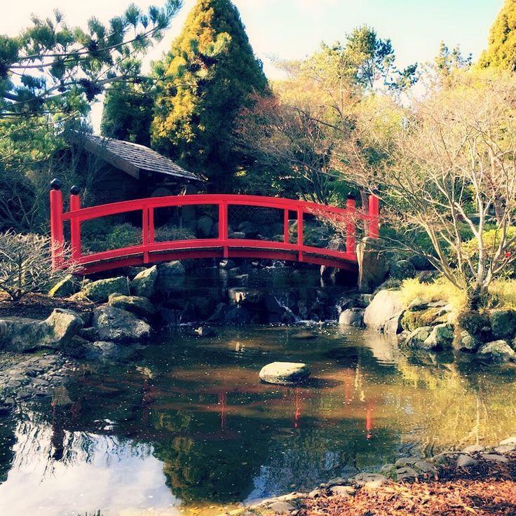 Japanese Gardens: Royal Tasmanian Botanical Gardens, Hobart ~ article and photo for think-tasmania.com ~ #Hobart #Tasmania #gardens #Japanese