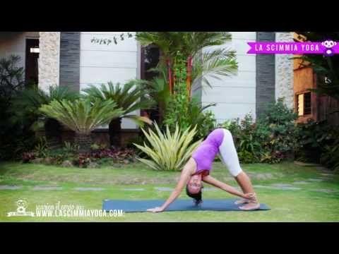 Yoga detox!!