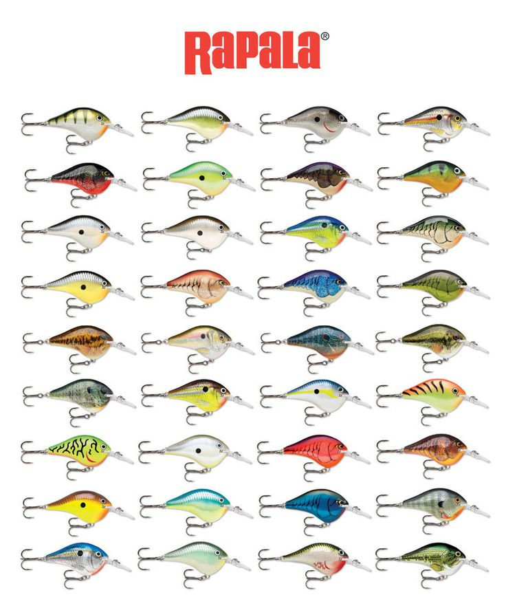 346 Best Paint Ideas Images On Pinterest Airbrush Bait And Bass