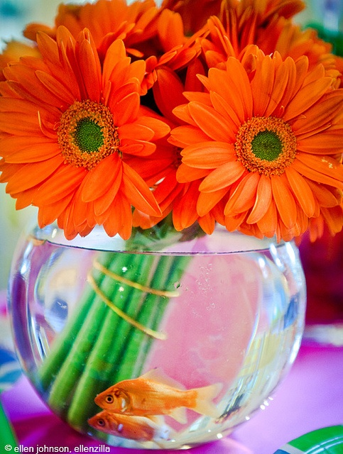 cute idea.  fish centerpiece and my favorite flowers