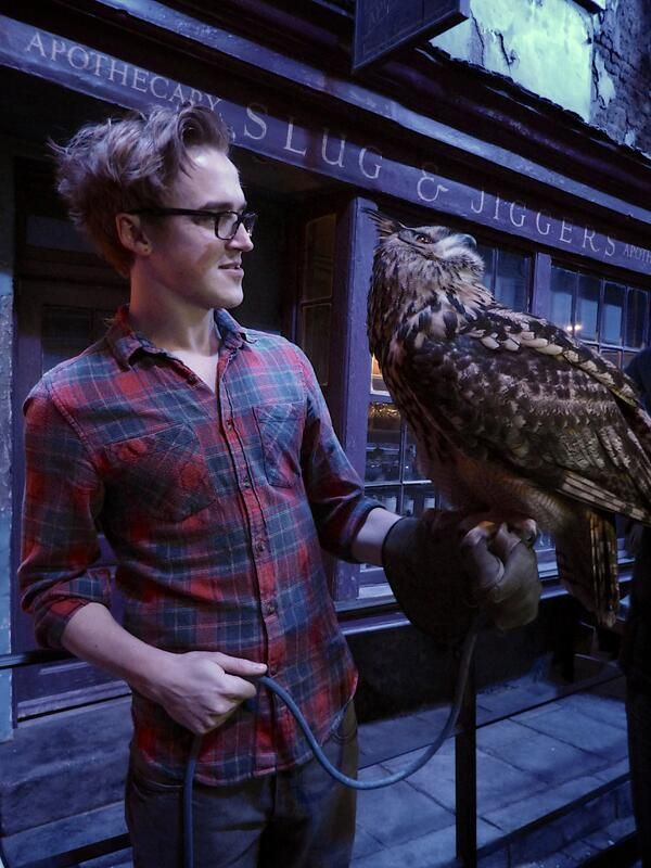 Tom Fletcher <3... in diagon ally... 2 of my obsessions...i may have died
