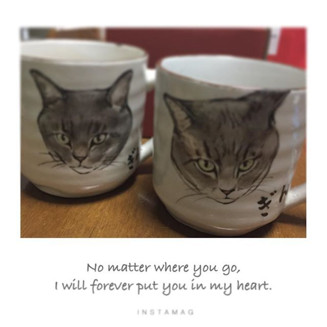 🎂 もうすぐお義母さんの誕生日💕 私と一週間違い❤️ 今年は銀ちゃんマグカップにしました! 左のキリッとしたのがお義母さんの 右の激おこイカ耳が私の。 宝物が増えた♡ #銀ちゃん#銀#にゃんすたぐらむ #ねこのいる生活  #誕生日#プレゼント #マグカップ#愛猫 #そっくりに描いてもらえた #皆様へ#オススメです #あゆみちゃん誕生日おめでとう