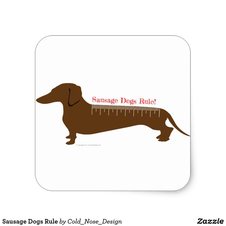 Sausage Dogs Rule