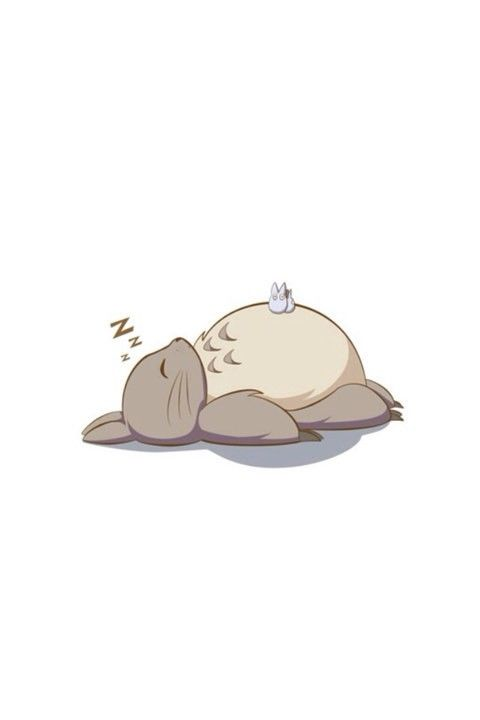 睡着的龙猫。。。…_来自小何何思的图片分享-堆糖网