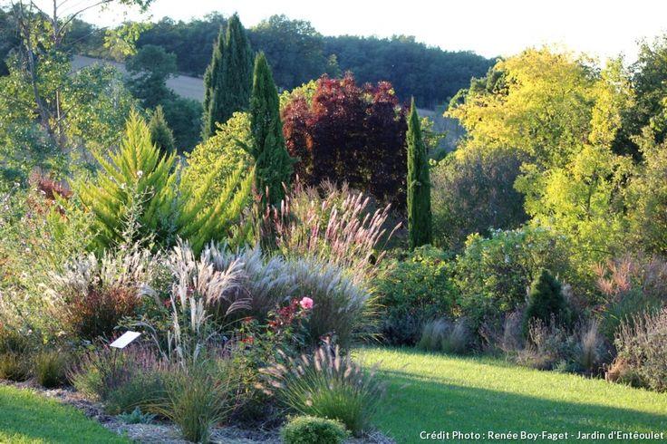 1000 idées sur le thème Graminées sur Pinterest  Plantes Vivaces ...