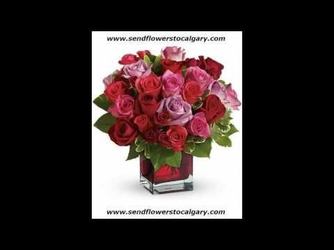 Send flowers from Oman to Calgary Alberta Canada  http://calgaryflowersdelivery.com  #SendFlowersToCalgary #FlowersInCalgary #calgary_flowers