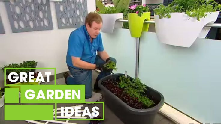 Learn to live lightly by growing your own food. Better Homes and Gardens - Gardening: small space veggie garden | Great Home Ideas https://www.youtube.com/watch?v=NXomlYgqcl4