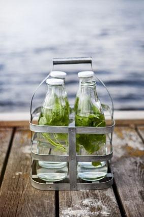 Bottle holder  Bottles