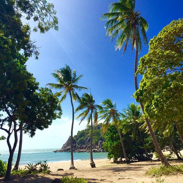 Private Home Queensland Australia: 235 Best Images About Tropical North Queensland On Pinterest