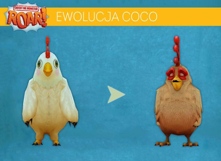 Coco - spoko? ;) Trochę zmalał, ale urosła mu grzywa, tfu - grzebień! ;d