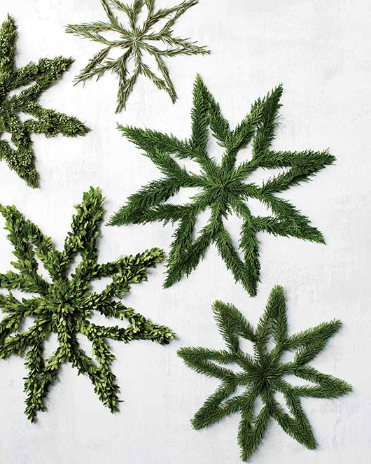 Evergreen stars trendenser.se