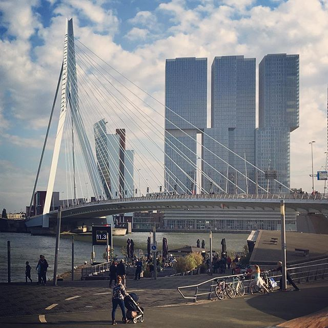 De Rotterdam is conceived as a vertical city: three interconnected mixed-use towers accommodating offices, apartments, a hotel, conference facilities, shops, restaurants, and cafes. The project beg…