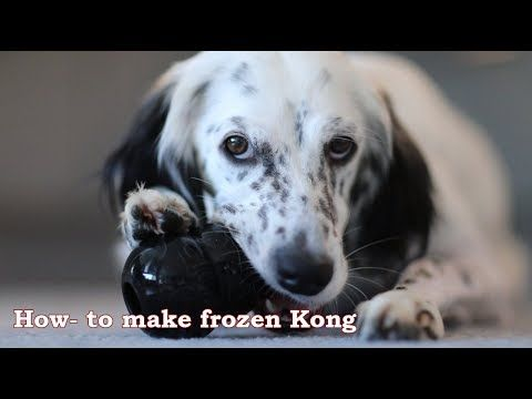 How to make frozen Kong - Dog toy  How to Survive with a Dog on Crate Rest?  A lot of treats and dog toy  that last  more than 5 minutes.  This is my dog's favorite toy