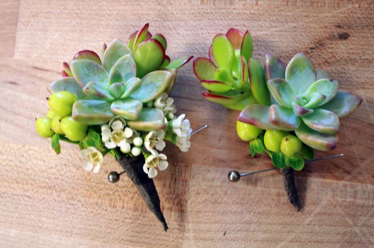 Pretty: Boutonnier Ideas, Wedding Boutonniere, Boutonnieres Ideas, Wedding Bouquets, Flower Ideas, Succulents Corsage, Succulent Bouquets, Succulents Ideas, Succulent Boutonnieres