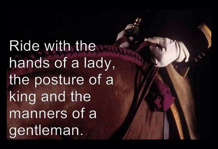 Ride with the hands of a lady, the posture of a king and the manners of a gentleman.                                                                                                                                                      More