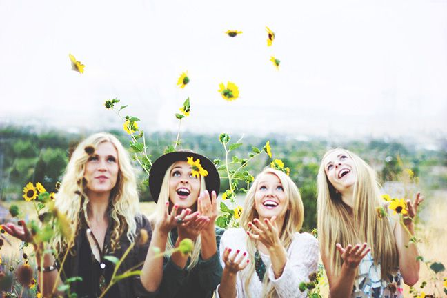 Play and take photos in a field of sunflowers