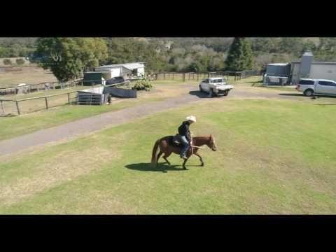 Elite Horsemanship Noosa