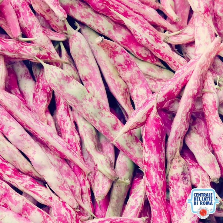 Fagioli, verdura *** Beans, veggie #HealthyFood