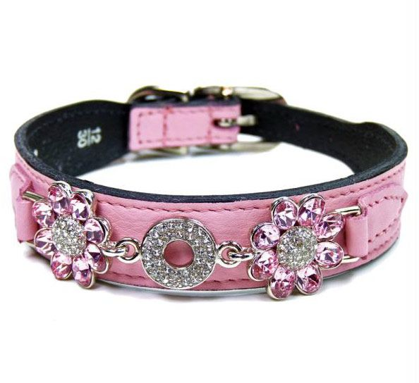 High fashion pink dog collar. Other colors available, too.  From Hartman and Rose designer dog collars.