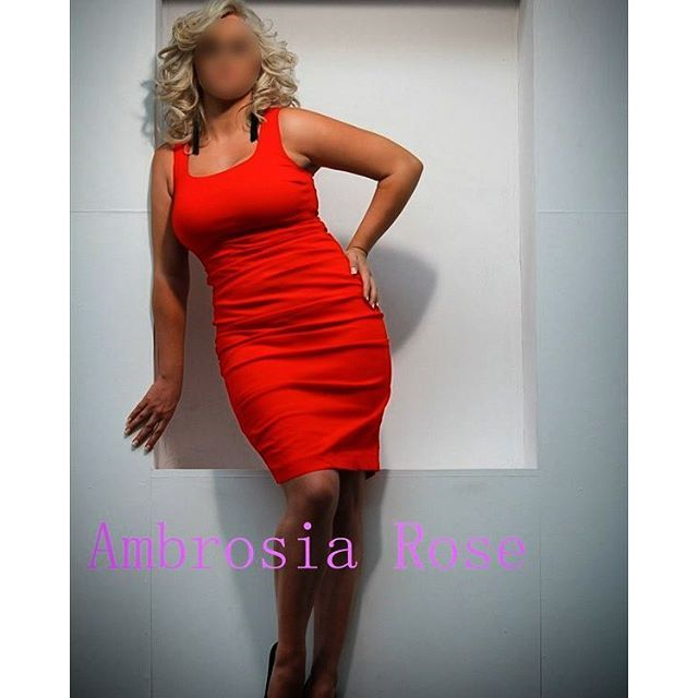 best  escort babes & escorts