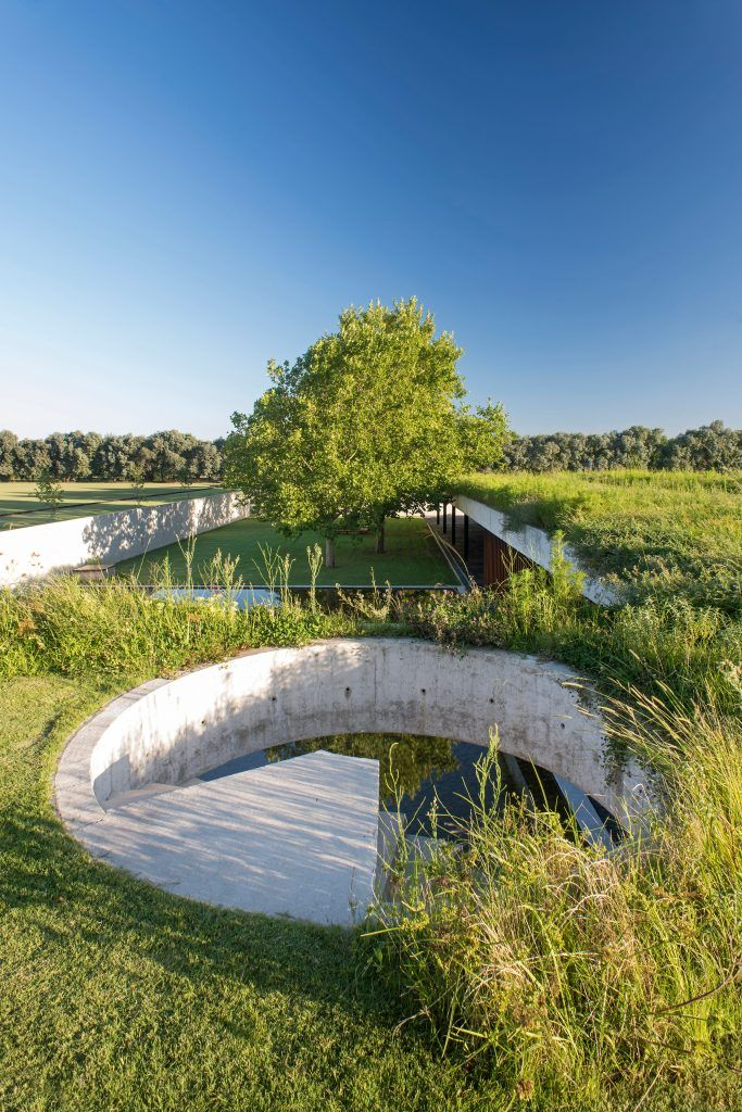 Best Polo Stables Features Grassy Roof For Horses To Graze And 400 x 300