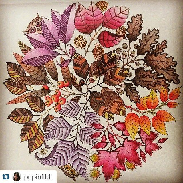 Mandala Owls Secret Garden De Corujas Jardim Secreto Johanna Basford Adult ColoringColoring BooksEnchanted Forest