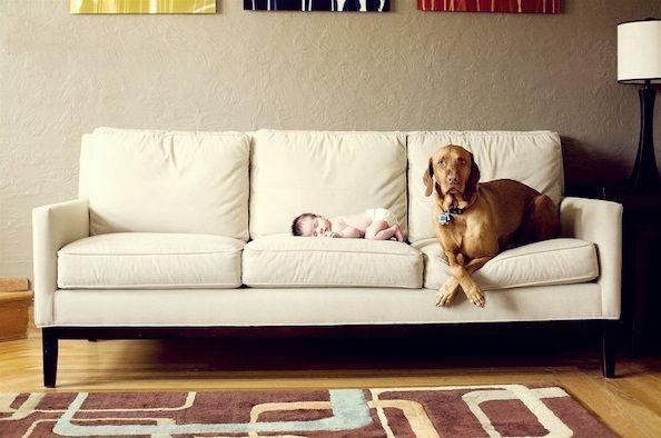 Star Clean Detail va ureaza o dimineata relaxanta pe o canapea curata :)