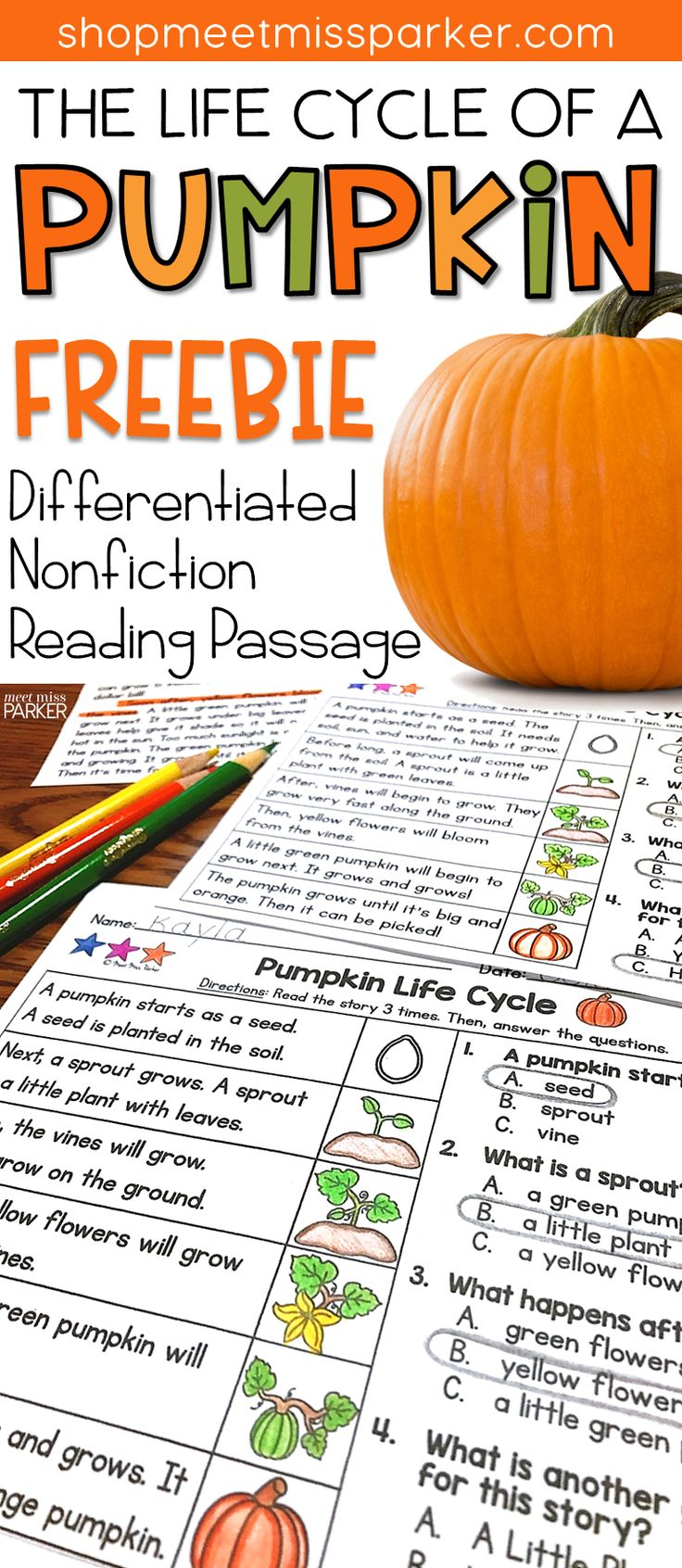 FREE Nonfiction Differentiated Reading Passage for first grade. This pumpkin life cycle reading comprehension passage can be used for reading interventions, literacy centers, homework, and guided reading groups in your 1st grade classroom!