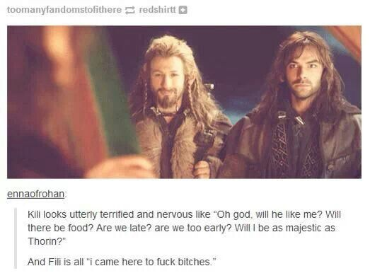The Hobbit - Fili and Kili XD