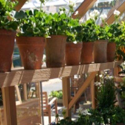 Hoge legplank voor ''De Tien'', 3.6m Cederhouten hoog hangende legplank die aan een of beide zijden geplaatst kan worden.