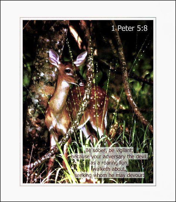 148 best Scripture Art Prints images on Pinterest Art prints