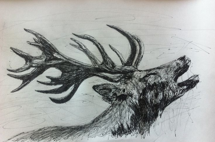 Deer by SuckThePipe.deviantart.com on @deviantART