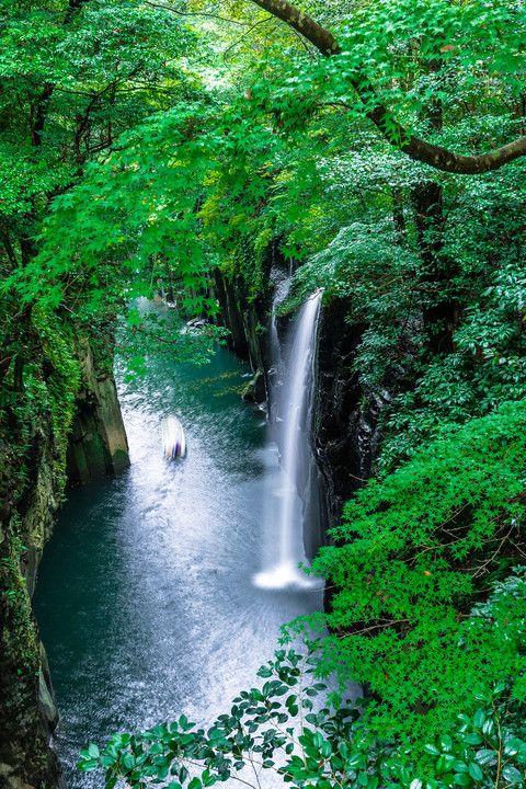 Takachiho, Miyazaki, Japan #緑 #Green