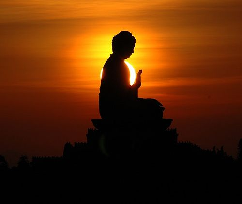 You are far from the end of your journey.The way is not in the sky.The way is in the heart. Buddha Dhammapada