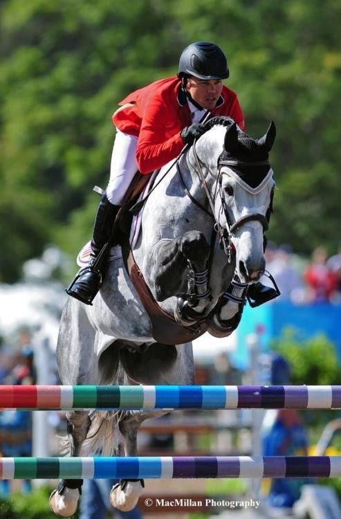 1142 Best Big Jumpers Images On Pinterest Horses Show