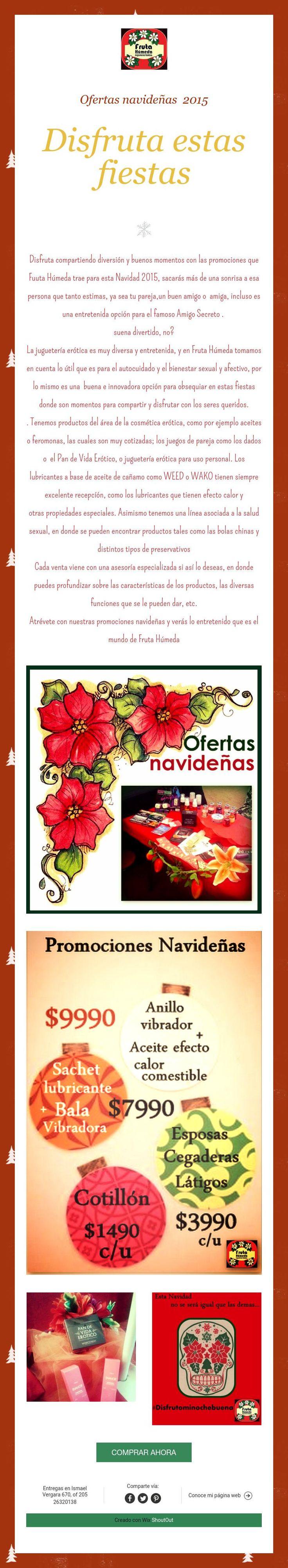 Ofertas navideñas 2015    Disfruta estas fiestas
