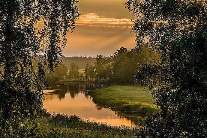 Helgeåen in morning light, Sweden