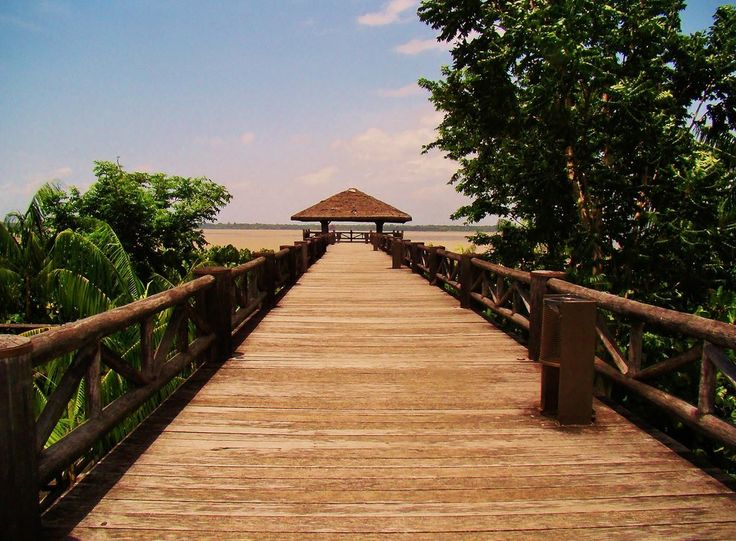 Mangal das Garças - 27 provas de que Belém do Pará precisa estar na sua lista de cidades a conhecer