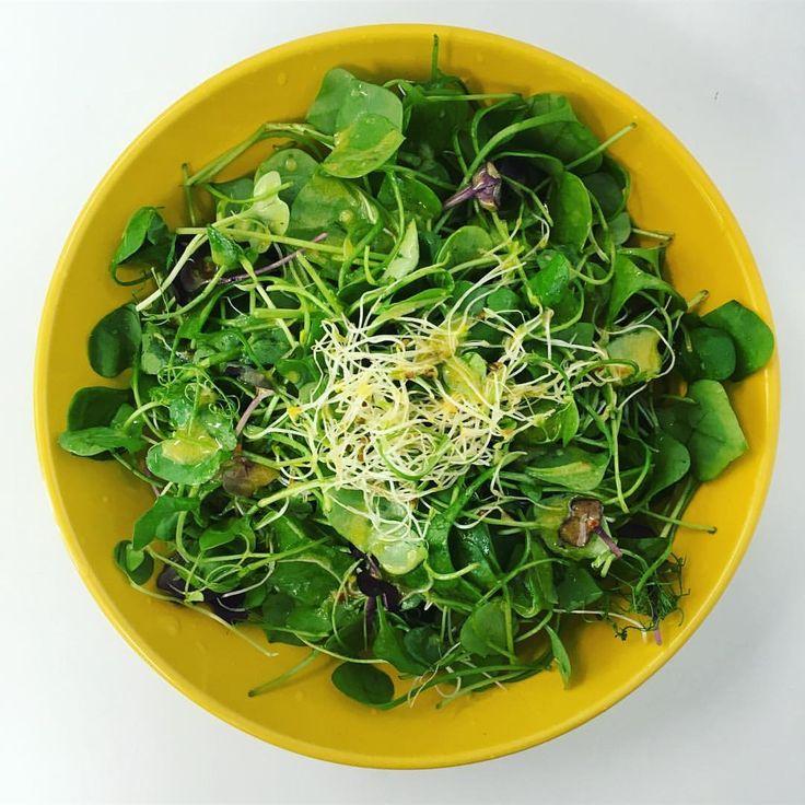 Hallo und guten Tag ☀️ Gerade gab es einen super leckeren und gesunden #Salat  Dieser bestand aus #Portulak #Microgreens und #Alfalfasprossen an einem Senfdressing. Und gestern habe ich tatsächlich Spargel im Laden vorgefunden. Ich konnt es kaum fassen und hab mir gleich 750g mitgeommen. Daraus mache ich mir heute Abend eine Suppe  #leckerschmecker #salat #mittagssalat #gesund #lecker #gesundessen #gesundleben #bewusstleben #eatclean #eatgreen #eathealthy #salad #healthy #food #healt...