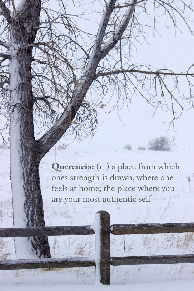 Querencia (n) ..a place from which ones strength is drawn, where one feels at home; the place where You are your most authentic self