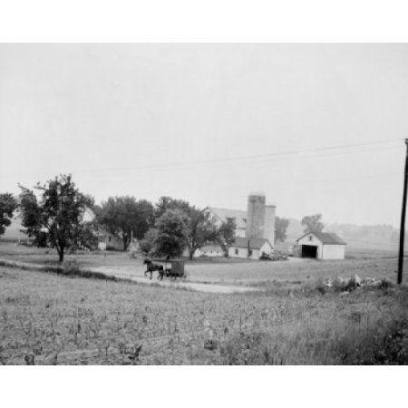 USA Pennsylvania Martindale Amish farm country Canvas Art - (18 x 24)
