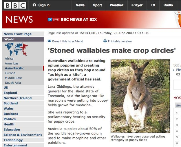 That time wallabies made some crop circles. | 30 Times News Headlines Were Far Stranger Than Fiction