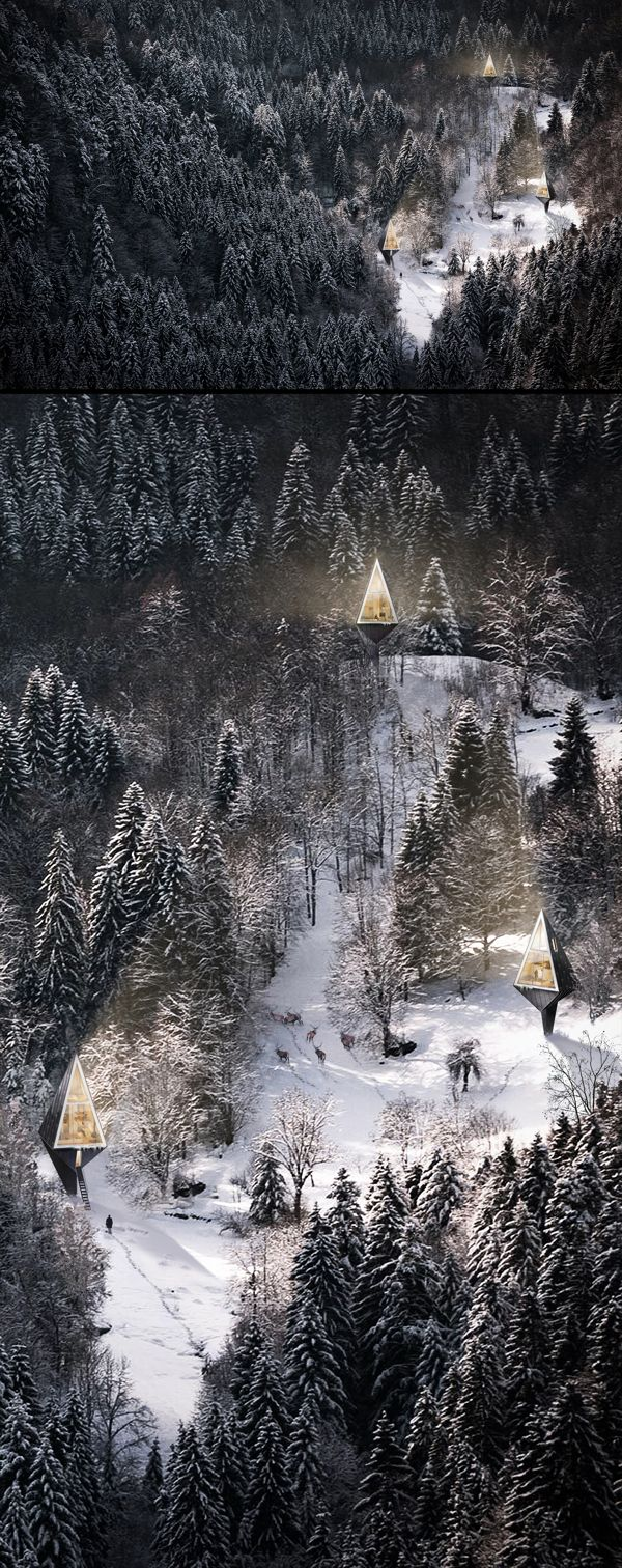 Primeval Symbiosis (Single Pole House) is an architectural design project by architecture student and interior designer Konrad Wójcik that seeks to organically install living spaces in forests without disrupting the innate beauty of nature. Breathtakingly beautiful | Tiny Homes