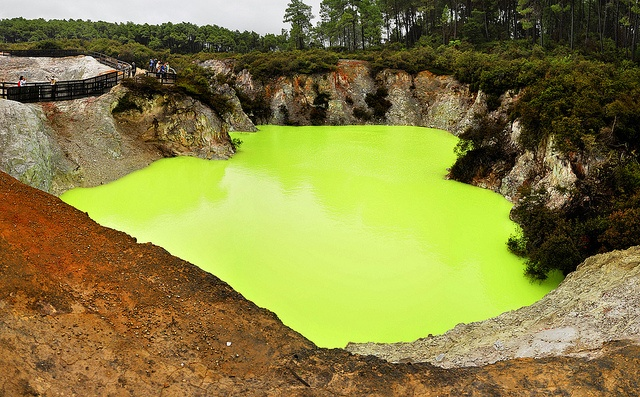 #Flourescent Pool The unbelievable colour of one of the hot pools at #Rotorua due to #mineral / #sulphur deposits in it!