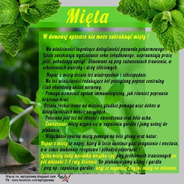 Blog o zdrowym i naturalnym odżywianiu, ziołach, przyprawach i roślinach.: MIĘTA - Nie tylko jako lecznicza herbatka ! ...