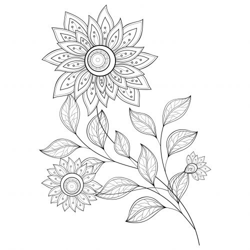 Coloring Pages Abstract Flowers : Coloring pages abstract flowers