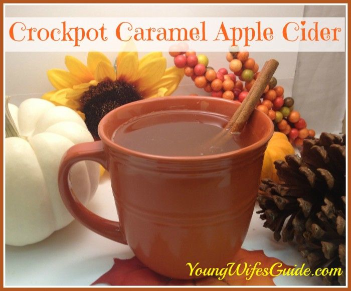 Autumn just wouldn't be complete without a big steaming mug of caramel apple cider! Here is the best recipe for CROCKPOT caramel apple cider!! yuuum!!